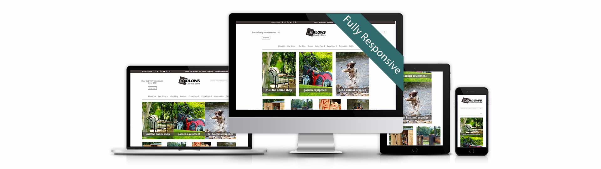 Website Design Boston
